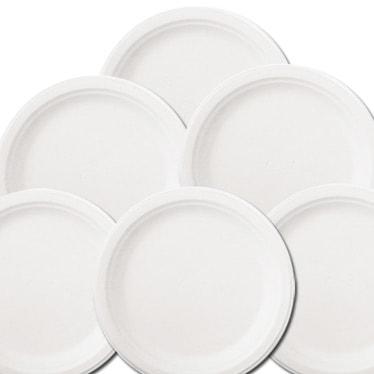 Economy Party Plates
