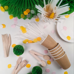 Biodegradable Party Supplies