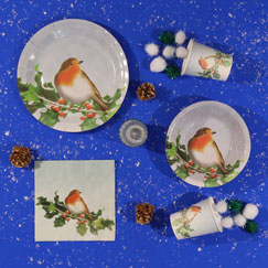 Christmas Robin Party Supplies