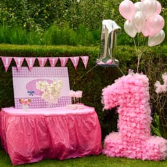 First Birthday Party Accessories