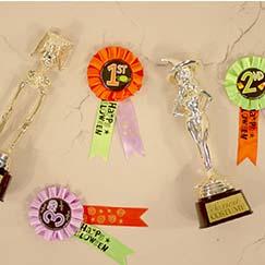 Halloween Awards & Trophies