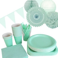 Mint Party Supplies