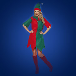 Women's Christmas Fancy Dress Costumes