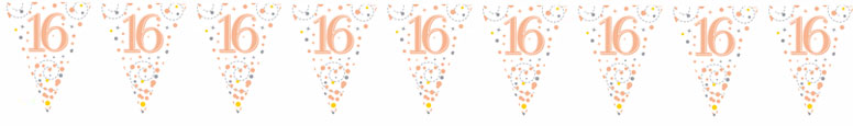 16th Birthday Rose Gold Holographic Foil Flag Bunting 3.9m Product Image