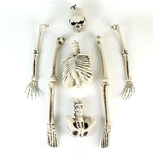 Halloween Prop Skeleton Hanging Decoration 92cm Product Gallery Image