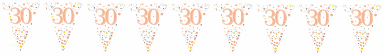30th Birthday Rose Gold Holographic Foil Flag Bunting 3.9m