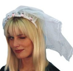 Brides Veils for Hen Night Product Image