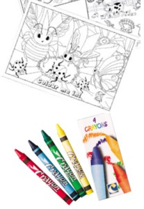 Bugs and Slugs A4 Colouring Sheet with 4 Crayons Product Image