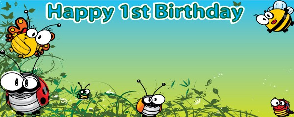 Happy Birthday Bugs Everywhere Design Small Personalised Banner - 4ft x 2ft