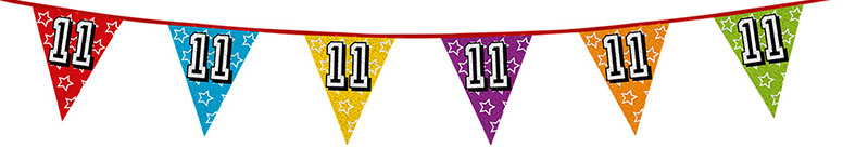 Age 11 Holographic Foil Pennant Bunting 8m Product Image