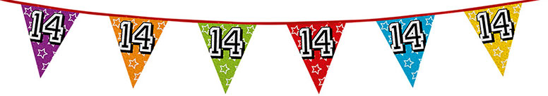 Age 14 Holographic Foil Pennant Bunting 8m Product Image