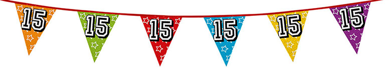 Age 15 Holographic Foil Pennant Bunting 8m Product Image