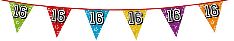 Age 16 Holographic Foil Pennant Bunting 8m