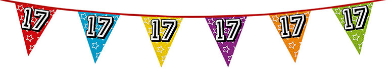 Age 17 Holographic Foil Pennant Bunting 8m Product Image