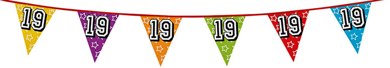Age 19 Holographic Foil Pennant Bunting 8m Product Image