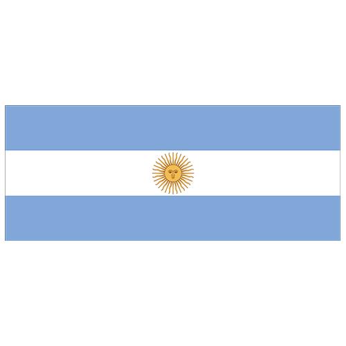 Argentina Flag PVC Party Sign Decoration 60cm x 24cm Product Image