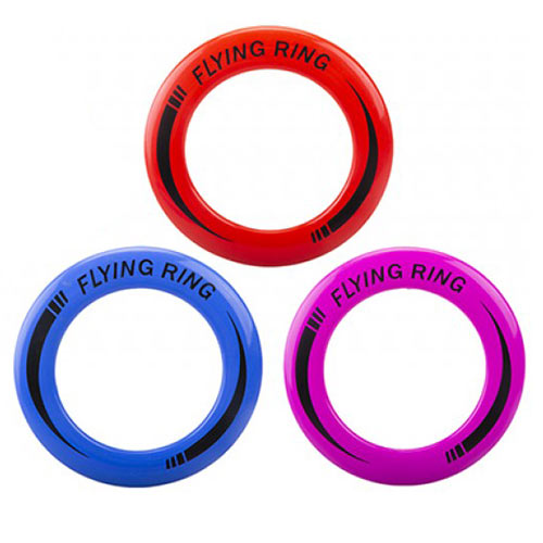 Assorted Flying Ring Frisbee 24cm Product Image