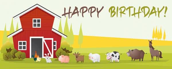 Barnyard Farm Animals In Line Happy Birthday Design Medium Personalised Banner - 6ft x 2.25ft