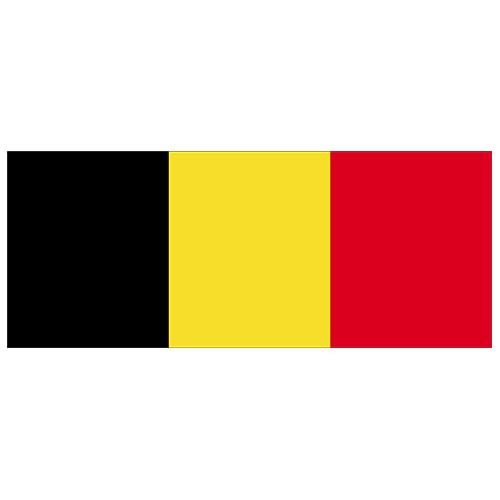 Belgium Flag PVC Party Sign Decoration 60cm x 24cm