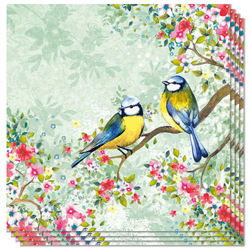 Bird Watching Green Luncheon Napkins 3Ply 33cm - Pack of 50 Product Image