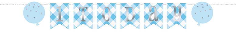 Blue Gingham First Birthday 1 Today Cardboard Pennant Banner 182cm