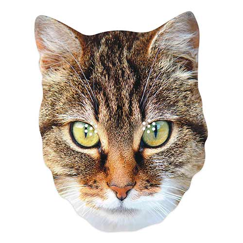 Cat Cardboard Face Mask Product Image