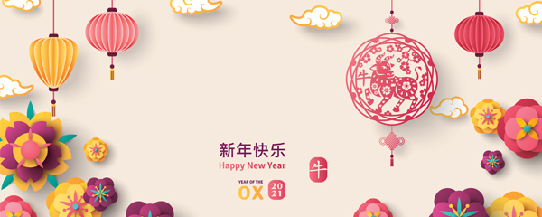 Chinese New Year 2021 Pastel Decorations Design Small Personalised Banner – 4ft x 2ft