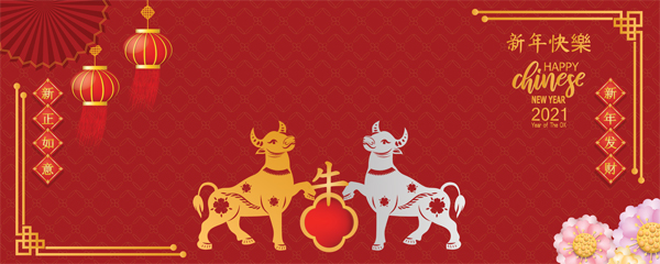 Chinese New Year 2021 White and Golden Oxen Design Small Personalised Banner – 4ft x 2ft