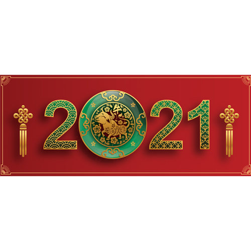 Chinese New Year Green 2021 PVC Party Sign Decoration 60cm x 25cm