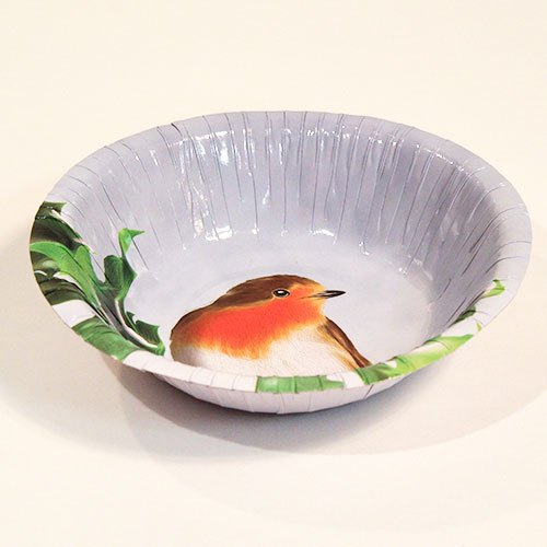 Christmas Robin Round Paper Bowls 18cm - Pack of 10