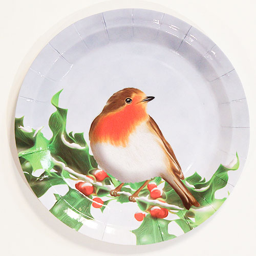 Christmas Robin Round Paper Plates 23cm - Pack of 10 Product Image