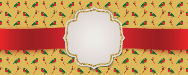 Christmas Robins Design Small Personalised Banner - 4ft x 2ft