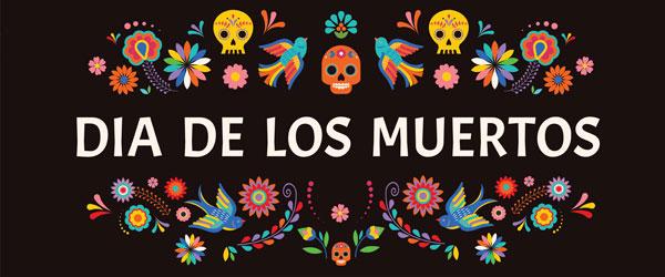 Dia de los Muertos Colourful Birds Halloween PVC Party Sign Decoration 60cm x 25cm Product Image
