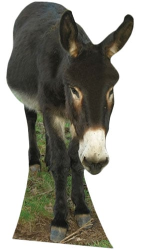 Donkey Lifesize Cardboard Cutout - 122cm