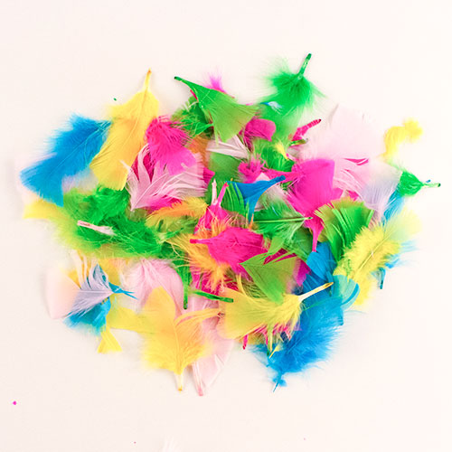 Easter Arts & Crafts Multi Coloured Feathers 15 Grams Product Image