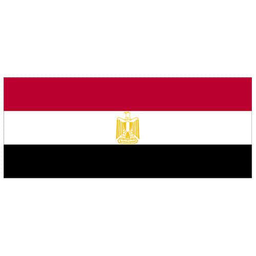 Egypt Flag PVC Party Sign Decoration 60cm x 24cm Product Image