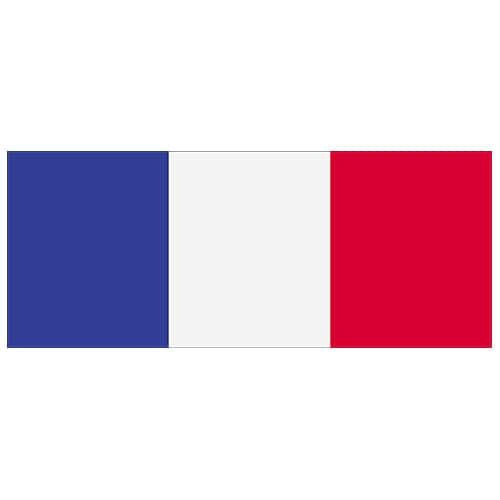 France Flag PVC Party Sign Decoration 60cm x 24cm