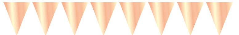 Giant Metallic Rose Gold Foil Pennant Bunting 10m Product Image
