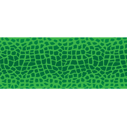 Green Reptile Animal Print PVC Party Sign Decoration 60cm x 25cm Product Image