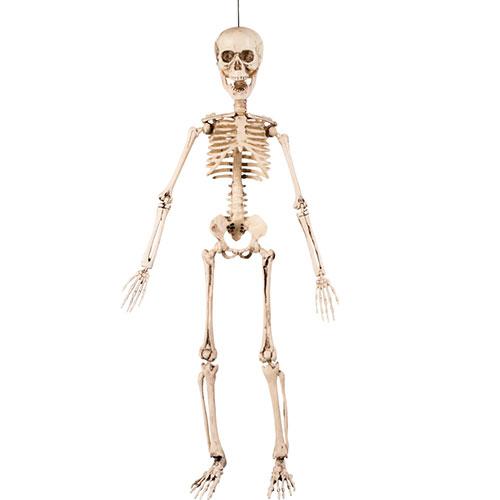 Halloween Prop Movable Skeleton Hanging Decoration 50cm
