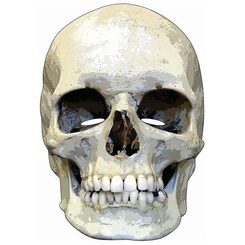 Halloween Skull Cardboard Face Mask Product Image