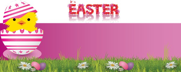 Pink Chick and Egg Design Small Personalised Banner - 4ft x 2ft