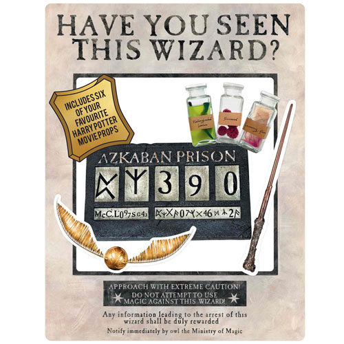 Harry Potter Wanted Poster Have You Seen This Wizard Cardboard White Selfie Frame With Props 87cm Product Image