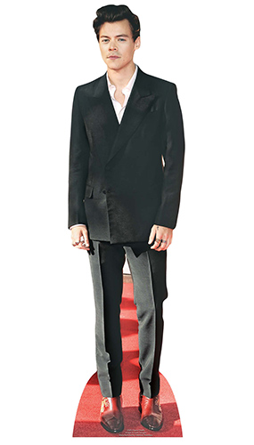 Harry Styles Red Shoes Star Mini Cardboard Cutout 90cm Product Image