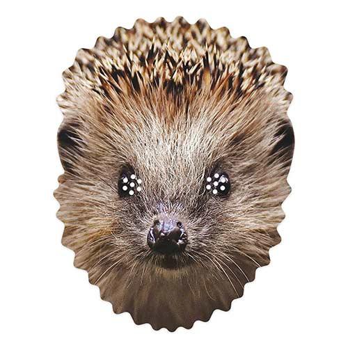 Hedgehog Cardboard Face Mask Product Image