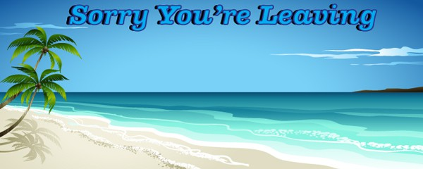 Sorry You're Leaving Paradise Design Medium Personalised Banner - 6ft x 2.25ft