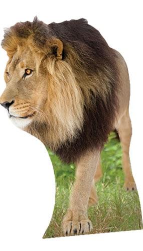 Lion Lifesize Cardboard Cutout - 130cm Product Image