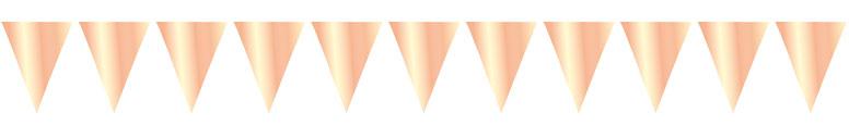 Metallic Rose Gold Foil Pennant Bunting 10m Bundle Product Image