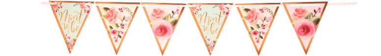 Mint To Be Hen Party Cardboard Pennant Bunting 4.57m