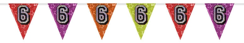 Number 6 Triangle Holographic Bunting - 8m Product Image